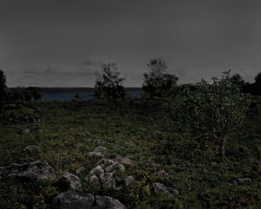 untitled-1-ragskar-island-martina-lindqvist.jpg