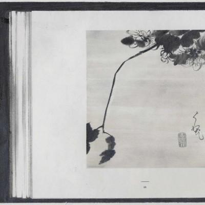 Image of Peiyuan Jiang