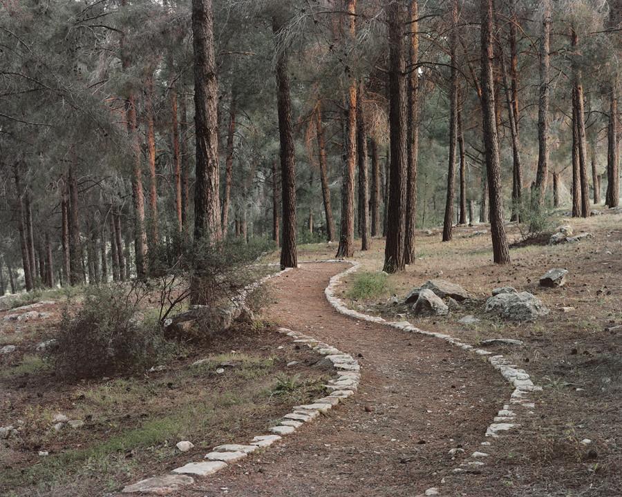 Greenberg_Stone Carved Trail_WEB.jpg